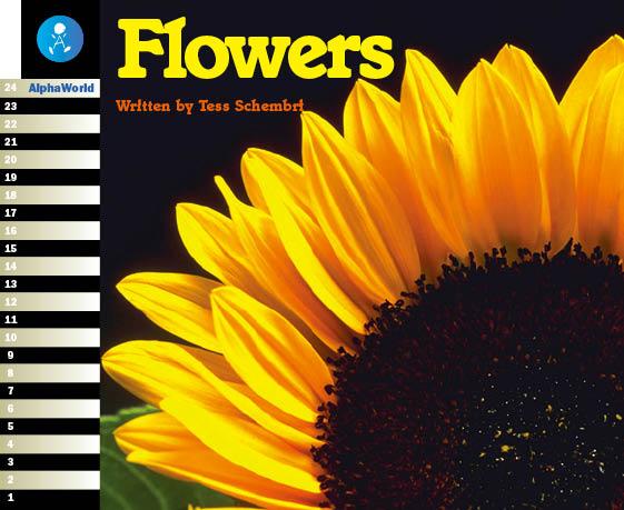 Level 1 Book 3 Flowers / いろのなまえをおぼえよう