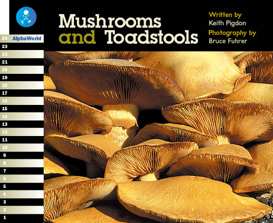 Level 14 Book 1 Mushrooms and Toadstools / きのこの生態