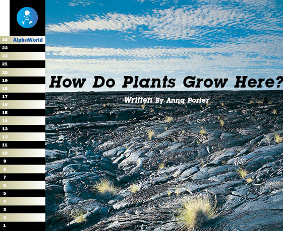 Level 19 Book 2 How Do Plants Grow Here? / 過酷な環境で育つ植物