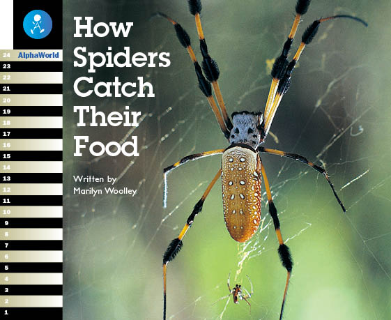 Level 19 Book 3 How Spiders Catch Their Food / クモのいろいろな捕食方法