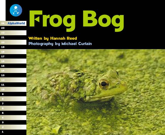 Level 20 Book 3 Frog Bog / カエルを守るために「カエルの沼」を作ってみよう