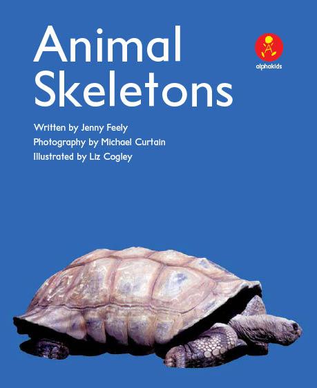 Level8 Book 2 Animal Skeletons/生き物の骨を見てみよう